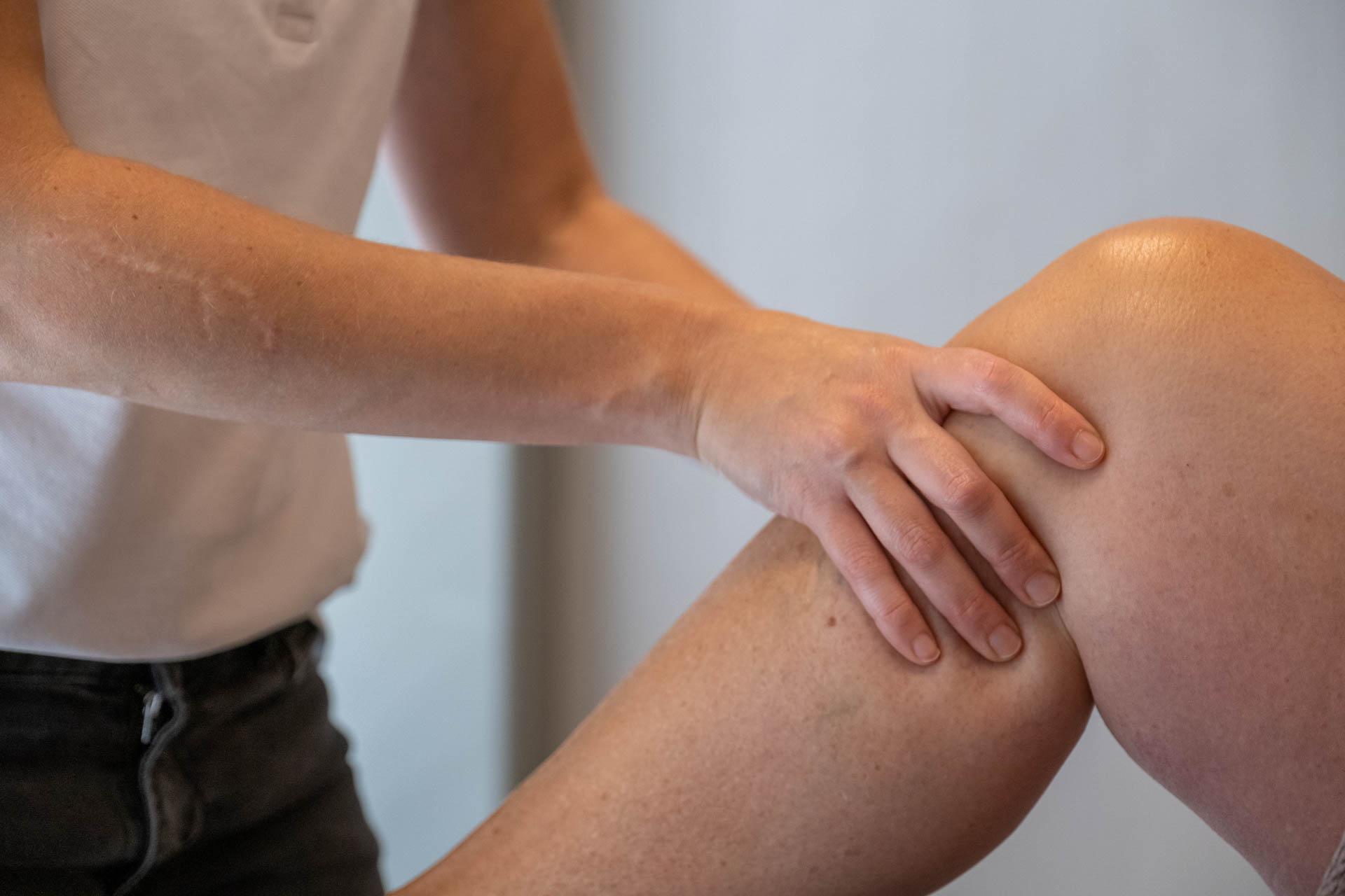 Knieprogramma